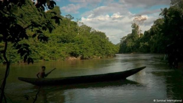 Prales v Amazonii
