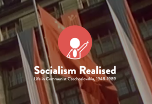 Projekt Socialism Realised
